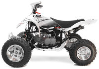 Quad FXR125 PITSTERPRO-Pit-bike
